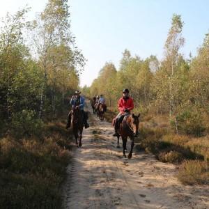 jazda konna rajdy konne konie nauka jazdy konnej koń obozy jeździeckie obóz jeździecki rajd konny nad morze  zachodniopomorskie drawsko czaplinek